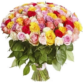 101 Գունավոր վարդ