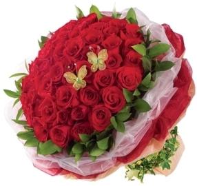 77 Элегантных Роз