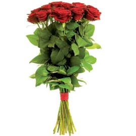Red Regal Roses (80cm)