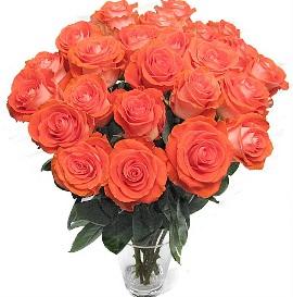 Bouquet of 37 Peach Roses