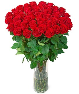 Красные Розы Премиум