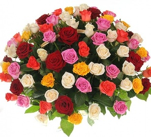 101 Fashionista Colorful Roses