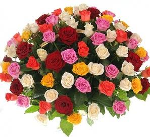 101 Шикарная Разноцветная Роза
