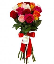Розы Прелесть