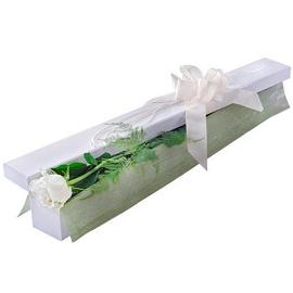 Белaя роза в коробке