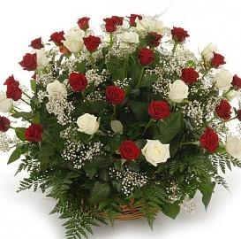 90 Կարմիր և սպիտակ վարդերով զամբյուղ