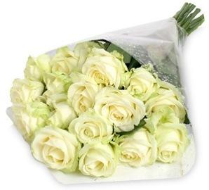 Սպիտակ հրաշալի վարդեր