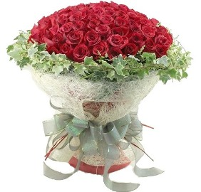 101 Glorious Red Roses