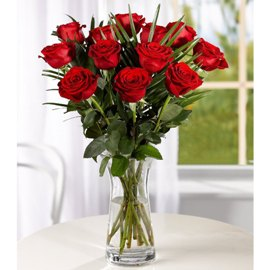 Adorable Red Roses