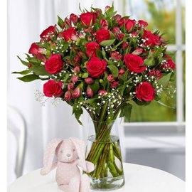 Красота 55 цветков