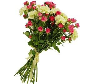 White Carnations Mix