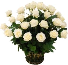 Շողացող սպիտակ վարդերով զամբյուղ