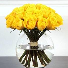 Դասական դեղին վարդեր