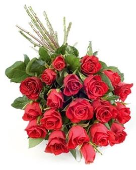 25 Сногсшибательных Роз