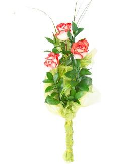 Romance of Roses