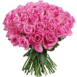 Awesome Pink Roses