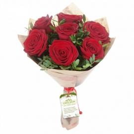 Выразительные розы