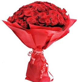 Поцелуй от Розы