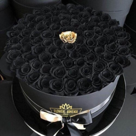 Goergoous Black Roses