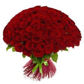 125 Изящные Красные Розы