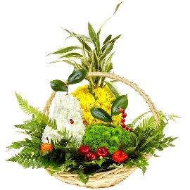 Floral Fruit Basket
