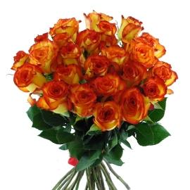 Դեղնագազարագույն վարդեր