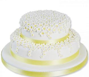 White Daisies Cake