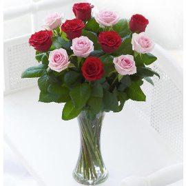 15 Розовых и Красных Роз
