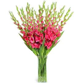 Pink Happy Bouquet