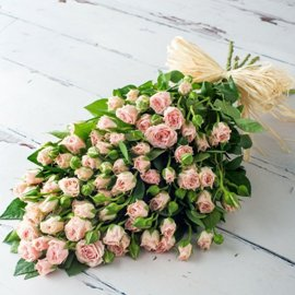 27 Hot Pink Spray Roses