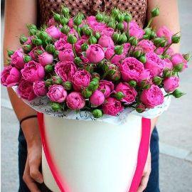 Великолепный Розовый Сапфир