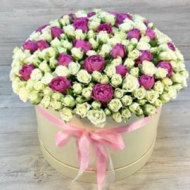 Two shades of love