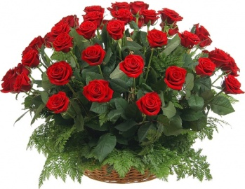 Funeral Basket of 55 Red Roses