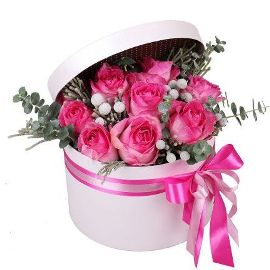 Pink Roses Attraction