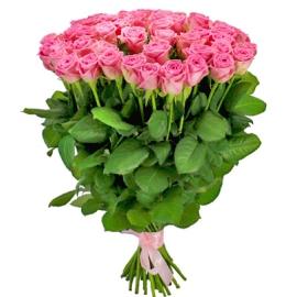 Длинные Розовые Розы