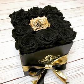 Royal Black Roses