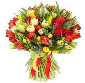 101 Восхитительных Тюльпанов