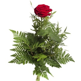 A Single Rose with Greenery
