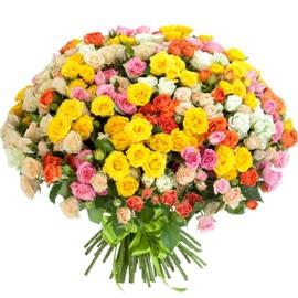 Գունագեղ վարդեր