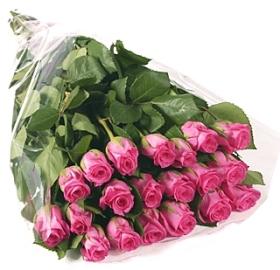 21 Отборных Розовых Роз