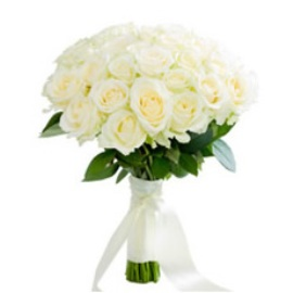 Գրավիչ սպիտակ վարդեր