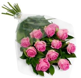 Alluring Roses
