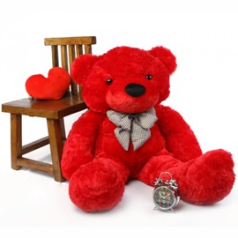 Тедди Говорит, что Любит Тебя